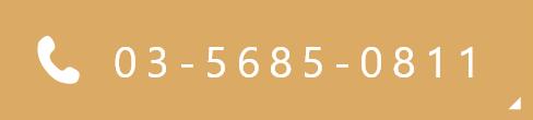 03-5685-0811